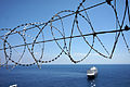 Barbed wire in Monaco.jpg