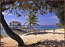 Beach on the south shore at Cayman Brac.jpg