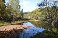 Beaver land - panoramio.jpg