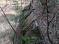 Beelitz Heilstätten -jha- 137243361824.jpeg