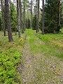 Belaja Rus' nature reserve -1.jpg