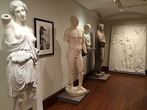 Fairfield University Art Museum - The museum features historic plaster casts after important works from ancient Greece and Rome