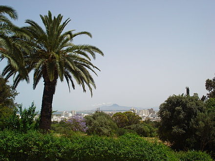 Belvedere Park dominating the city Belvedere - Tunis.jpg
