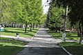 Berdsk, Novosibirsk Oblast, Russia - panoramio (2).jpg