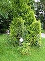 Berggasthof Haldenhof (11).jpg