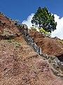 Biosphere Reserve La Gomera 16.jpg