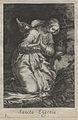 Bloemaert - 1619 - Sylva anachoretica Aegypti et Palaestinae - UB Radboud Uni Nijmegen - 512890366 28 S Eugenia.jpeg