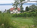 Bodensee, Birnau (Lake Constance, Birnau) - geo.hlipp.de - 5613.jpg