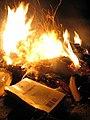 Book burning (4).jpg