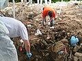 Bosnia mass grave.jpg