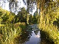 Botanischer Garten, Hamburg.jpg