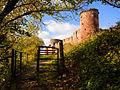 Bothwell Castle 2013.jpg