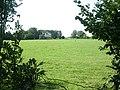 Bower Chalke, sheep - geograph.org.uk - 1432073.jpg