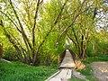 Bridge - panoramio - Wolodymyr Lavrynenko.jpg