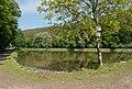 Brno-Jehnice - rybník U Lesa od jihozápadu (02).jpg