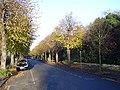 Broadway, Peterborough - geograph.org.uk - 82174.jpg