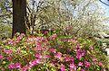 Brookgreen Gardens33.jpg