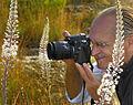 Brucoli Sicilia Italy - Creative Commons by gnuckx (5017955289).jpg