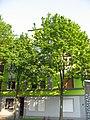 Brunnenstr., Dortmund - panoramio (1).jpg