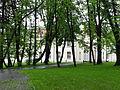 Brzesko, ul. Götza-Okocimskiego 6 park, 1900 nr 615228 (4).JPG
