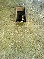 Buçaco 15 - panoramio.jpg