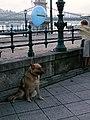 Budapest (3899054082).jpg