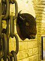 Buffalo head (24392733210).jpg