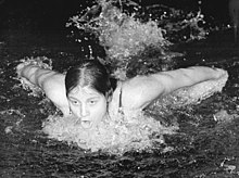 Woman emerging above the surface of the water in a swimming pool to take a breath as she is stroking butterfly. Her arms are behind he shoulders and moving forward for another stroke. she is capless and goggleless and has dark hair.