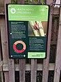 Bushy Park Lyme disease warning sign.jpg