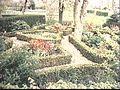 Buxushagen en bloemperken Kleur - Hoornaar - 20503064 - RCE.jpg