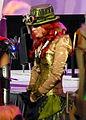 C2E2 2014 Contest - Envy the Green Fairy (13922375178).jpg