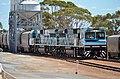 CBH010 + CBH002 + train Goomalling, 2016 (03).jpg
