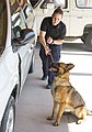 CBP Canine Training Facility El Paso Texas (28127492350).jpg