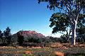 CSIRO ScienceImage 1060 Australian landscape.jpg