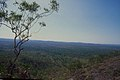 CSIRO ScienceImage 1261 Northern Australia landscape.jpg
