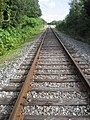 CSX Tracks east of US 19.jpg