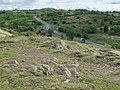 Caerphilly Mountain - geograph.org.uk - 434324.jpg