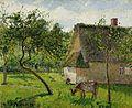 Camille Pissarro - Verger à Varengeville avec vache (1899).jpg