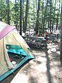 Camping at Interlochen State Park.jpg