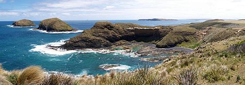 Cape Grim  Wikipedia