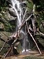 Cascadas de agua en el parque.jpg