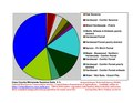 Cass County Pie Chart New Wiki Version.pdf