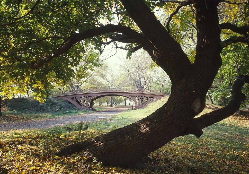 Un pont dans Central Park à New York (États-Unis). (définition réelle 4648×3248)