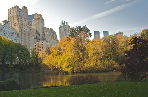 Central Park during Autumn, NYC