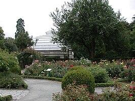 Christchurch Botanic Gardens