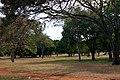 Centro do Parque da Cidade.jpg