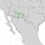 Cercocarpus breviflorus range map 3.png