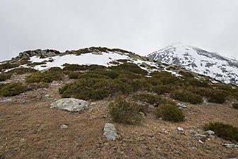 Cerro Minguete y Montón de Trigo - 01.jpg