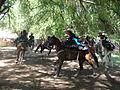 Charreada en El Sabinal, Salto de los Salado, Aguascalientes 07.JPG