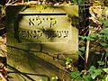 Chenstochov ------- Jewish Cemetery of Czestochowa ------- 89.JPG